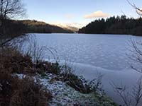 Loch Ard forest. Our favourite spot and offers great photo opertunities.