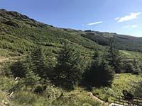 Ardgoil peninsula. View back down the glen