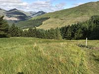 Ardgoil peninsula. The grass on this section can get slippy - even in hot weather