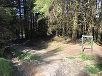 Ardgoil peninsula. Path starts to widen