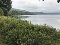 Loch Venachar loop. Picture taken from beside the first picnic spot.