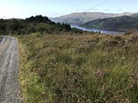 Glen Fruin to Loch Long.