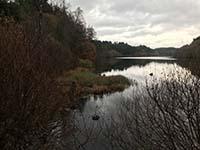 Aberfoyle to Loch Venachar. Image from Aberfoyle to Loch Venachar