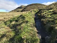 Ben Lomond. This hill seems to go up and up forever