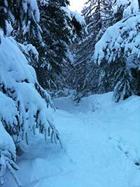 Firmounth. Deep in snow
