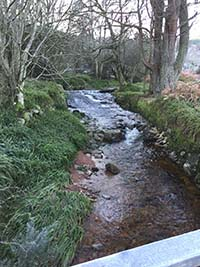 Firmounth. View of the burn (stream)