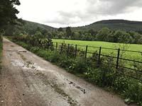 Firmounth. A damp wet morning