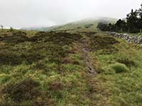 Glen Sherup loop. View up the hill