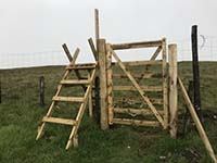 Glen Sherup loop. A style and a gate. The gate is easier.