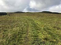 Glen Sherup loop. The path is faint and can get muddy