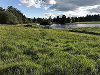 Loch Skene . View of the loch