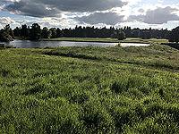 Loch Skene . Policy Loch