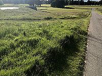 Loch Skene . Road across the golf course
