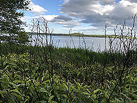Loch Skene . Loch Skene from the path