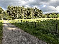 Loch Skene . Opens out to fields