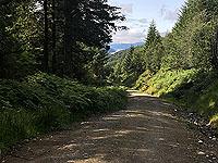 Glen Loin Loop. The loch in the distance
