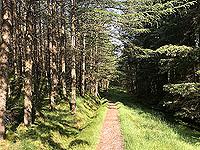 Glen Loin Loop. For a short distance