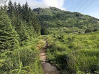 Glen Loin Loop. Still in Glen Loin