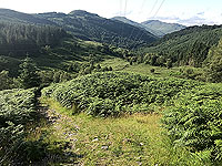 Glen Loin Loop. More back down the glen