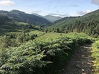 Glen Loin Loop. Last view back down Glen Loin