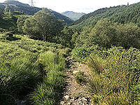 Glen Loin Loop. Back down the glen