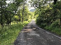 Glen Loin Loop. Just off the main road