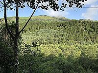 Glen Loin Loop. The green of Scotland