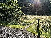 Glen Loin Loop. Small path across the field