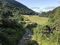 Glen Loin Loop. Looking back down the glen