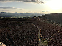 Scolty hill and more. View from the top of the tower towards Clachnaben
