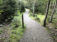 Scolty hill and more. Good quality paths