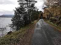 Loch Rannoch Marathon. Loch on your left for most of the run