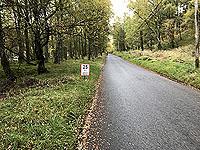 Loch Rannoch Marathon. Just over one mile to go