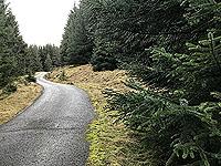 Killin - Lochan Breaclaich. Relentless uphill