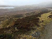 Killin - Lochan Breaclaich. A misty morning