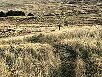 Killin - Lochan Breaclaich. Marker pole to aim for in the distance