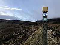 Killin - Lochan Breaclaich. Rob Roy Way marker up close