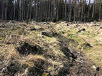 An Sidhean. Path heading up the hill