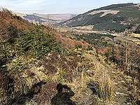 An Sidhean. Looking back down the path towards Strathyre