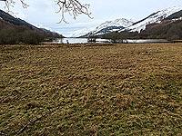 Lochs Voil and Doine. Head of Loch Voil