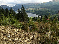 Meall Liath. View of Loch Lubnaig