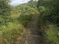 Kinlochard 5 lochs. Route is now trail