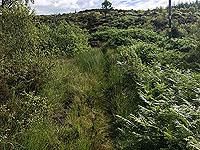 Kinlochard 5 lochs. Heading up hill