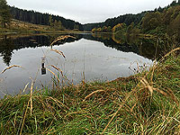 Past The Stank. Small fishing loch