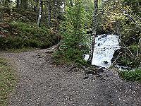 Plodda falls.