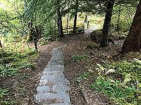 Plodda falls. Careful on the stone steps