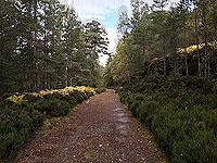 Coire an Loch loop. Heading back