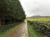 Craig Hill loop. Image from Craig Hill loop
