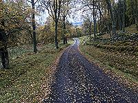 Craig Hill loop. Towards Aberfeldy