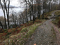 Rowerdennan to Loch Arklet. Good quality path